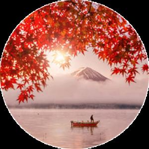 Autumn at Mount Fuji Splashback