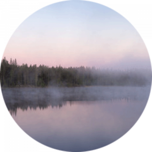 Forest Lake with Fog