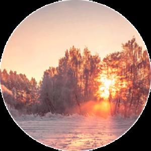 Winter Landscape Splashback
